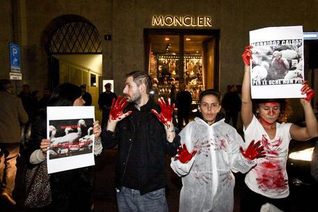 moncler jacket animal cruelty