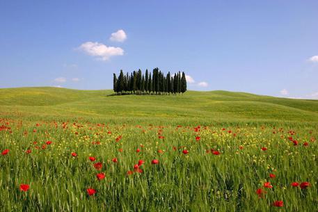 Giornata Nazionale del Paesaggio: iniziative in tutta Italia