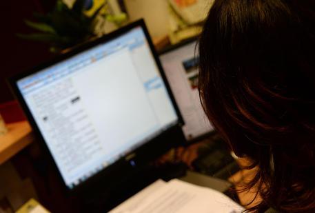 Professioni: al lavoro al computer © ANSA