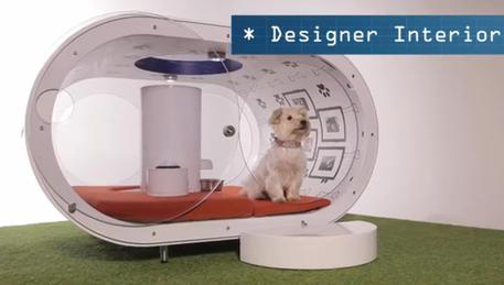 Samsung Dream Doghouse © ANSA