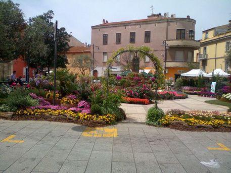 Olbia in fiore rassegna centro storico sardegna for Centro divani olbia