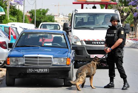 Tunisia: donna kamikaze in pieno centro, 9 feriti