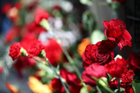 Torna 39 flor 39 fiori e piante a torino piemonte for Fiori edibili