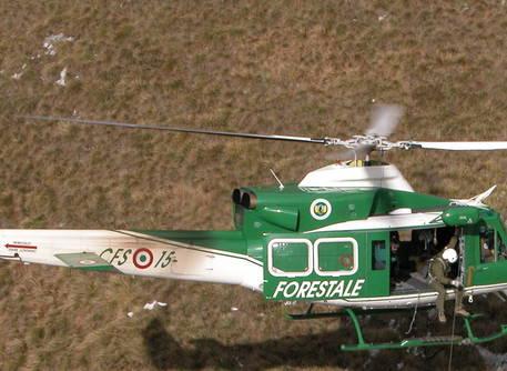 Spuntano le volanti verdi dei carabinieri, in servizio dal 2017 è polemica