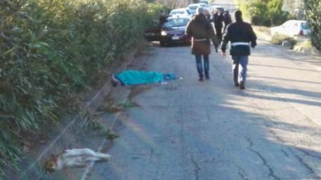 Muore con i suoi cani in un incidente stradale