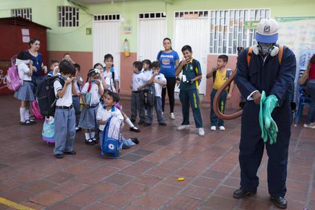 Zika, in Spagna caso di contagio su una donna incinta