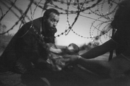 Il World Press Photo vinto dal fotografo australiano Warren Richardson © EPA