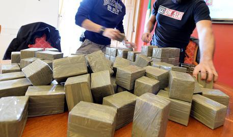 Cro - Milano, vasta operazione contro il traffico internazionale di droga
