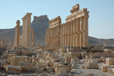 Regime Damasco riprende il controllo di Palmira © AP