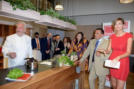 Cucine Gatto passa a Calvi (Patriarca) - Marche - ANSA.it