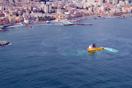 Genova, petrolio in mare aperto: la foto-simbolo del cormorano