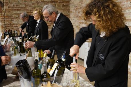 incontri molise wine Napoli