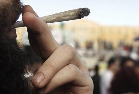 Camera: approva in Aula il ddl sulla legalizzazione della cannabis