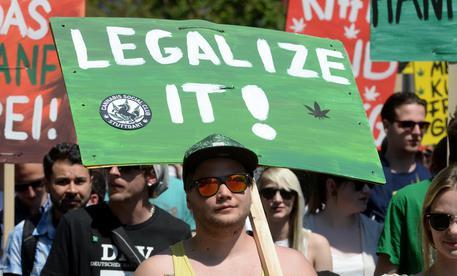 Legalizzare la cannabis Scontro alla Camera