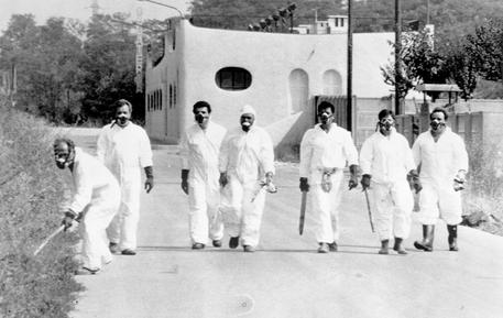 40 anni dal disastro di Seveso, simbolo della