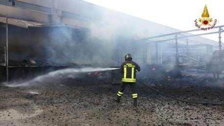 Incendio, vasto rogo a Foligno: muoiono due cavalli
