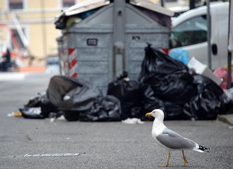 Emilia Romagna, in arrivo 20mila tonnellate di rifiuti dalla Puglia