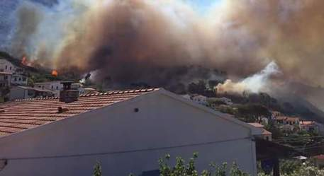 Incendi all'Elba, le fiamme minacciano le case