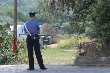 Reggio Emilia, bimbo di 8 anni muore investito dal trattore del padre