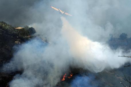 Incendi: cinque roghi in provincia d'Imperia