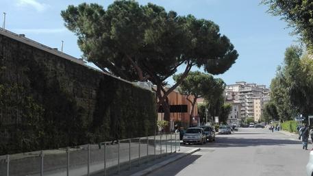 Infermiere aggredito al Civico di Palermo$