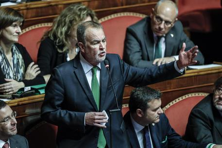 Roberto Calderoli (Lega):