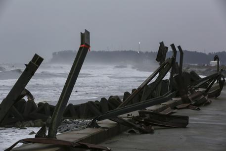 Giappone, barca con otto scheletri arriva sulla costa © ANSA