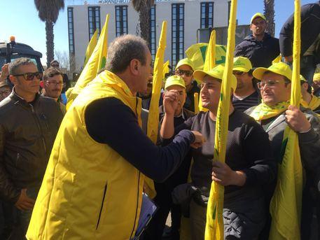 Xylella: protesta agricoltori a Lecce