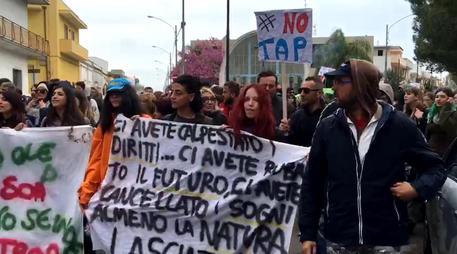 Gasdotto in Puglia, il Tar Lazio sospende espianto ulivi per Tap
