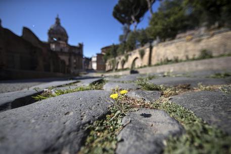 Roma: il museo archeologico del Colosseo © ANSA