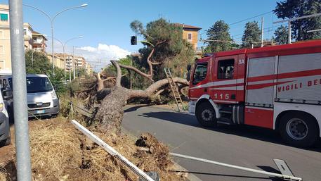 Pioggia e temporali in Abruzzo, allerta meteo emesso dalla Protezione Civile