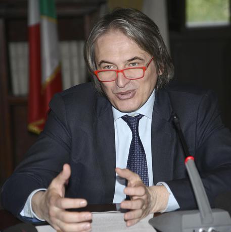 Il direttore generale Rai, Antonio Campo dall'Orto (Archivio) © ANSA