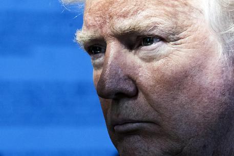 Usa: bufera sulla comica per la foto di Trump decapitato