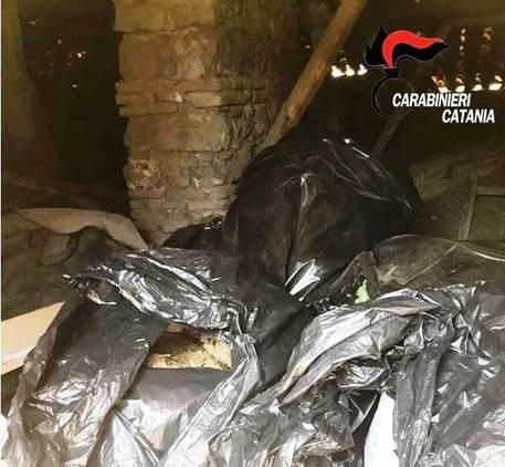 Catania, Marijuana nascosta nei sacchi dell'immondizia$