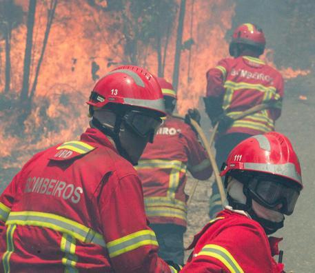 Portogallo: in fiamme i boschi di Pedrogao Grande © EPA