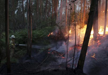 Grande incendio boschivo in Portogallo © AP