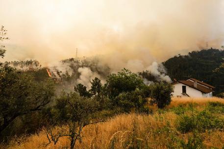 Grande incendio in Portogallo