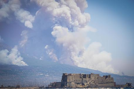 Wildfires rage in southern Italy, Vesuvius slopes
