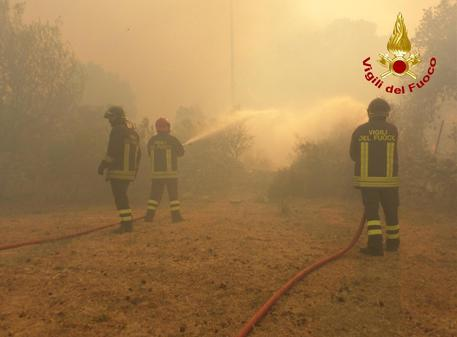 Castel Fusano, fiamme nella pineta: case evacuate, chiusa Via Cristoforo Colombo