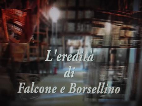 Palermo: ancora intimidazioni per l'istituto Falcone - Borsellino, trovato uccello con testa tagliata