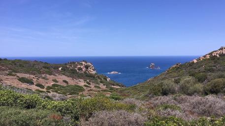 Tuffo serale: lei si salva, giovane scomparso in mare in Sardegna