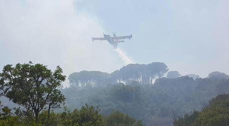 Incendi da nord a sud in Sardegna