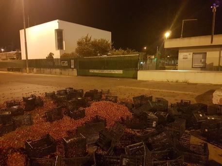 Vittoria, per protesta agricoltori buttano pomodori in strada$