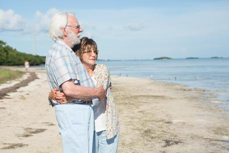 Venezia 74, Paolo Virzì in concorso con The Leisure Seeker