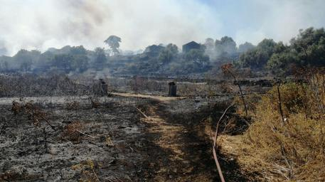 Danneggiata dal fuoco riserva nel catanese$