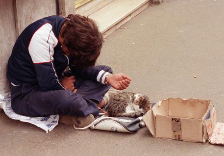 Un ragazzino chiede l'elemosina in compagnia di un gattino in una foto di archivio scattata a Roma © ANSA