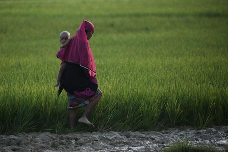 Rohingya, San Suu Kyi: