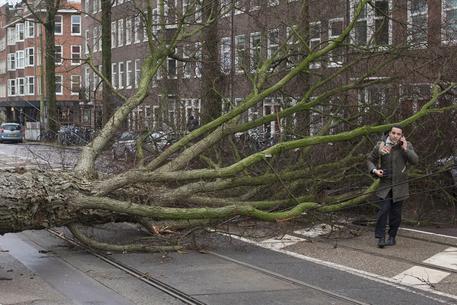 Friederike, l'uragano che flagella la Germania