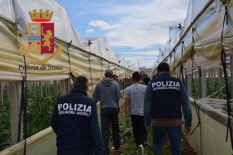 Arrestati quattro imprenditori per caporalato$