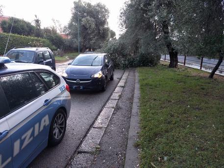 Maltempo, albero su auto a Sassari